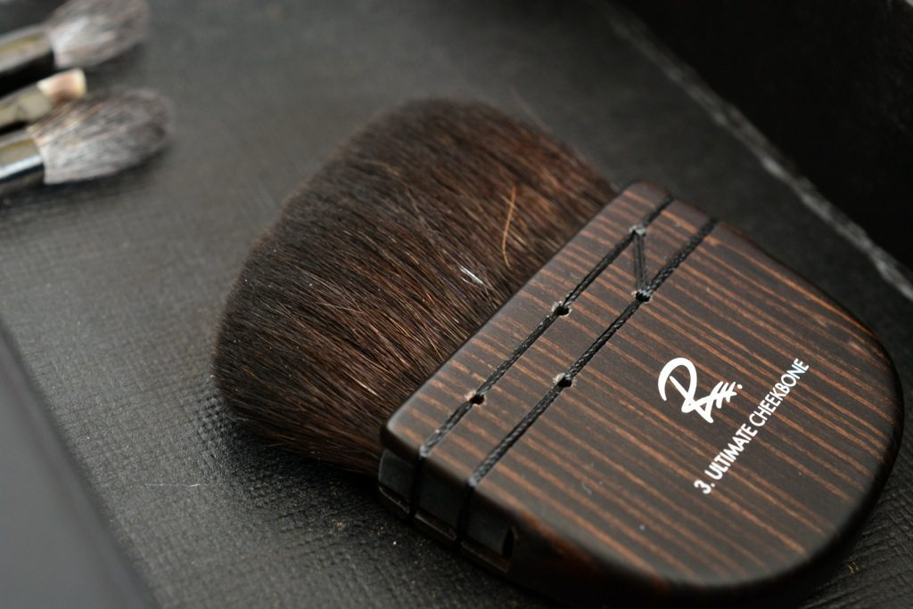 Rae Morris Brushes <br > Magnetic Attraction