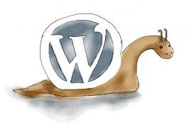 Wordpress Schnecke 690